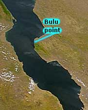 Repartition de Cyprichromis microlepidotus 'Bulu point'.