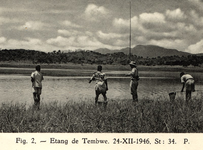 Pêche de récolte sur un étang côtier à Tembwe, lac Tanganyika.