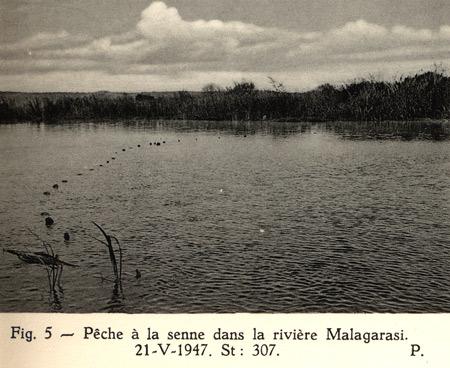 Pêche à la senne dans la rivière Malagarazi.