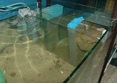 Filtre pour aquarium maison avie home for Pompe bassin externe