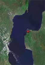 Localité du cichlidé Tropheus polli, Bulu point.