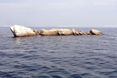 Slaf rocks