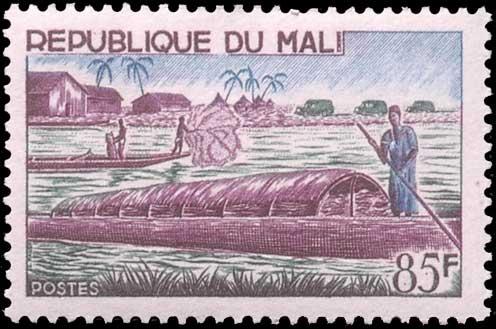 Pêche à l'épervier au Mali.