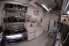 Labo d'ichtyologie de l'université de Bâle.