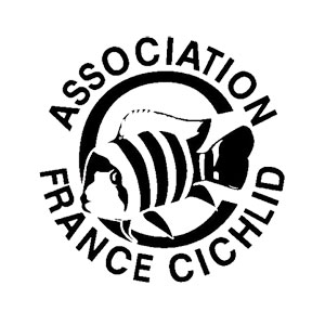 Association France Cichlid AFC
