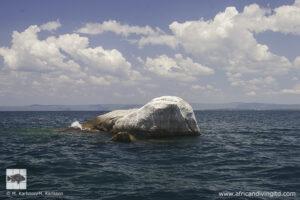Silaf rocks